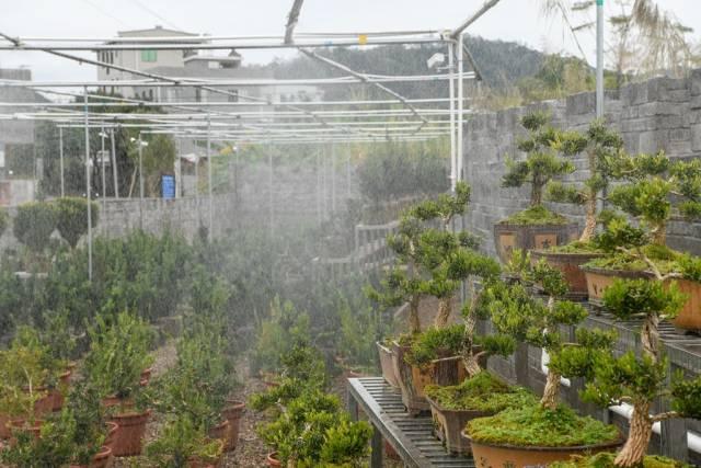 基地配套有自动化施肥、喷淋、温度测量等现代化设备。