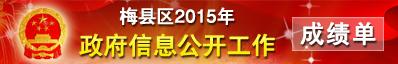 2015成绩单